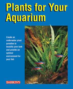 Plants For Your Aquarium - Peazz.com