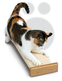 Bootsie's Combination 3831 Cat Scratcher - Peazz.com