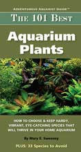 The 101 Best Aquarium Plants - Peazz.com