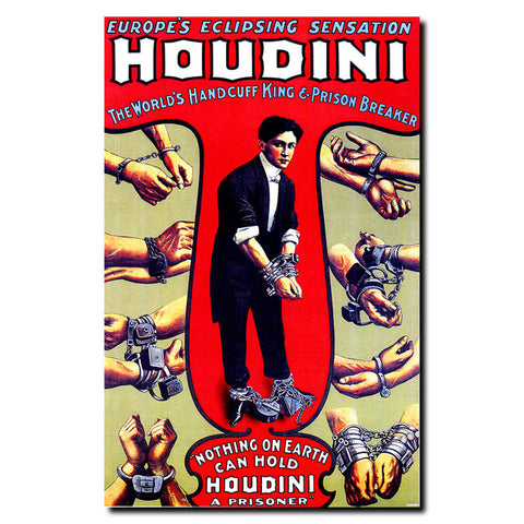 Trademark Commerce V7083-C1419GG Houdini-14x19 Ready to Hang Art - Peazz.com