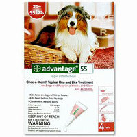 Advantage for Dogs 21-55 lbs, Red 4 Pack - Peazz.com