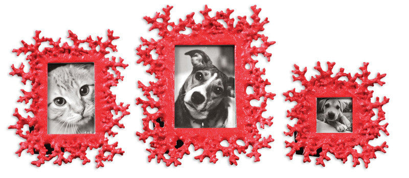 Uttermost 18559 Red Coral Photo Frames Set/3