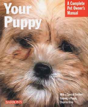 Your Puppy -Peazz Pet
