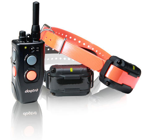 Dogtra Element Hunter Series 1/2 Mile 2-Dog Remote Trainer 302M - Peazz.com