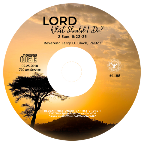 1188 Lord What Should I Do? (CD)