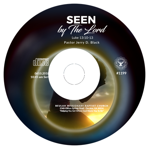 1199 Seen By The Lord (CD)