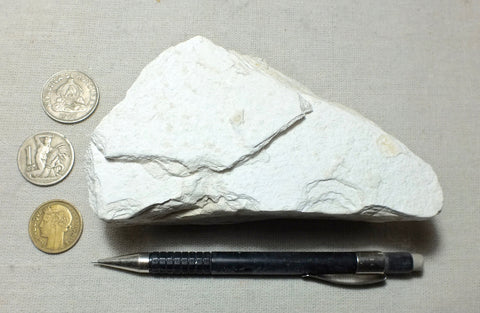 diatomite - marine diatomite from the Sisquoc Formation, Upper Miocene to lower Pliocene - teaching hand specimen