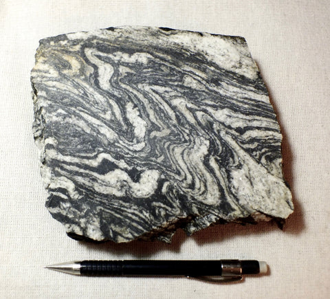 gneiss - large cut display specimen of a Proterozoic granite gneiss from California