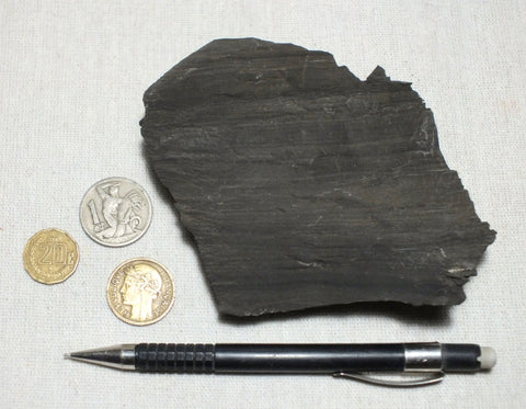 oil shale - hand specimen of oil shale from Parachute Canyon, Colo.