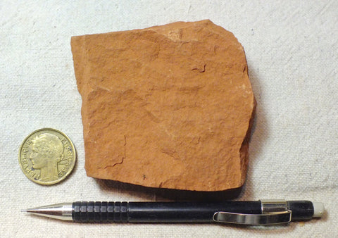 sandstone -  teaching hand specimen of a fine-grained red Permian sandstone from the Hennessey Formation of Oklahoma