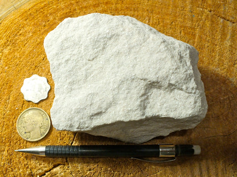 sandstone  -  teaching hand specimen of Jurassic fine-grained white Navajo Sandstone, naturally bleached by reducing fluids