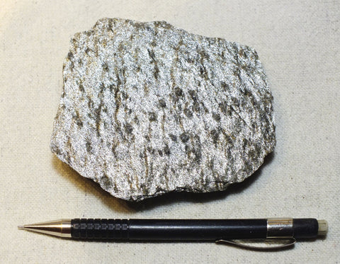schist - teaching hand specimen of quartz mica schist with a spectacular silver shimmer from the Black Hills of South Dakota
