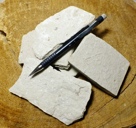 shale  -  student specimens of a Lower Miocene soft diatomaceous shale from the Modelo Formation - UNIT OF 5 SPECIMENS