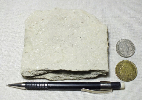 shale -  teaching hand specimen of soft light tan diatomaceous shale from the Upper Miocene Modelo Formation of California