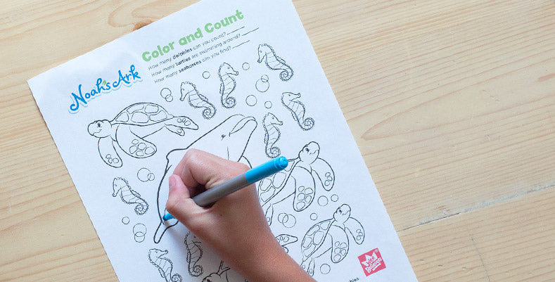 Download the Count and Color Activity