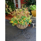 Classic Ironwork Urn Planter - World of Greenhouses - 5