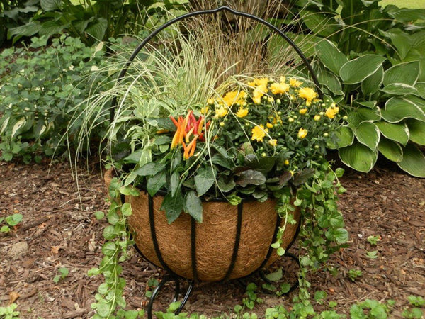 Classic Ironwork Cauldron Planters - World of Greenhouses - 2