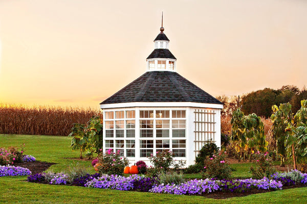 The Garden Shed Greenhouse - World of Greenhouses