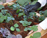 Palram Drip Irrigation Kit - World of Greenhouses - 4