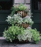 Classic Ironwork Cascade Planter - World of Greenhouses - 1