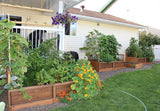 OLT Raised Garden Bed 6'x3' - World of Greenhouses - 3