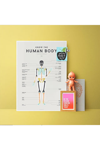 We Are Squared - Chart - Human Body