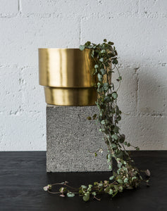Gold pot on table