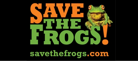 SAVE THE FROGS!
