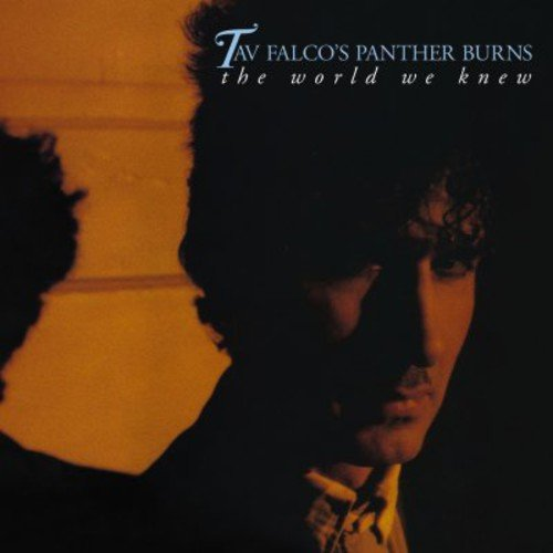 Tav Falco & Panther Burns - The World We Knew + Shake Rag + Live