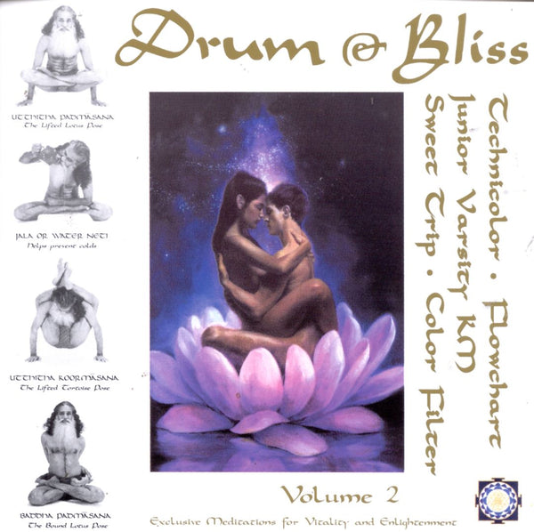 Various Artists - Drum & Bliss, Vol. 2