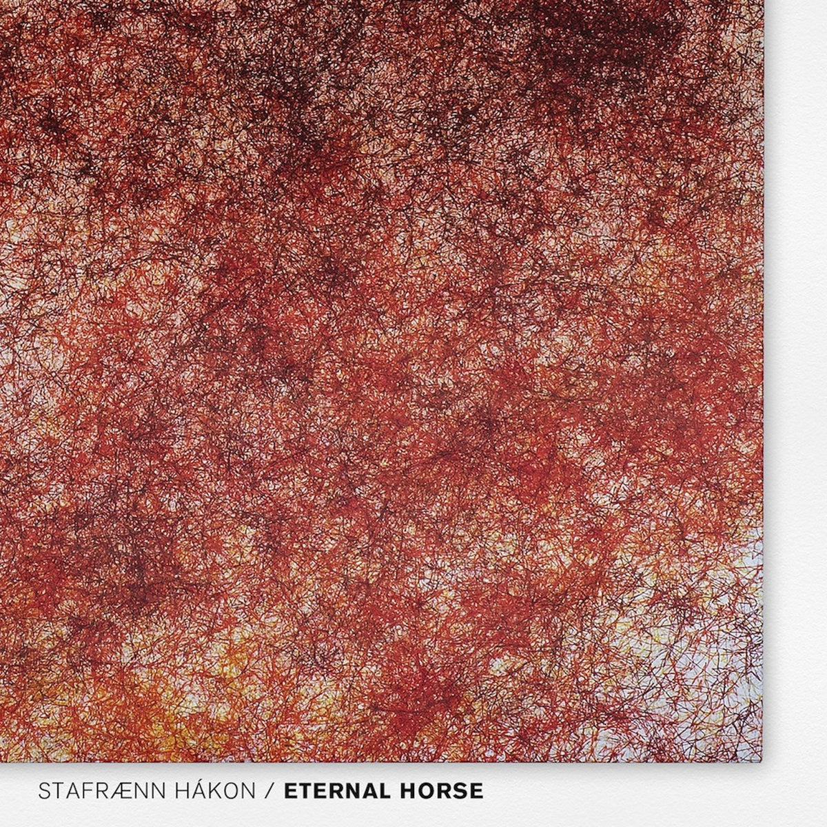 Stafraenn Hakon - Eternal Horse