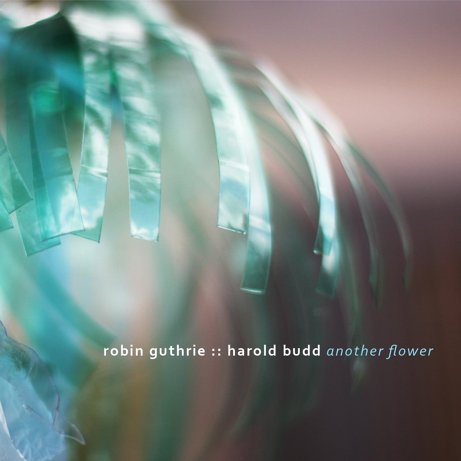 Robin Guthrie, Harold Budd - Another Flower