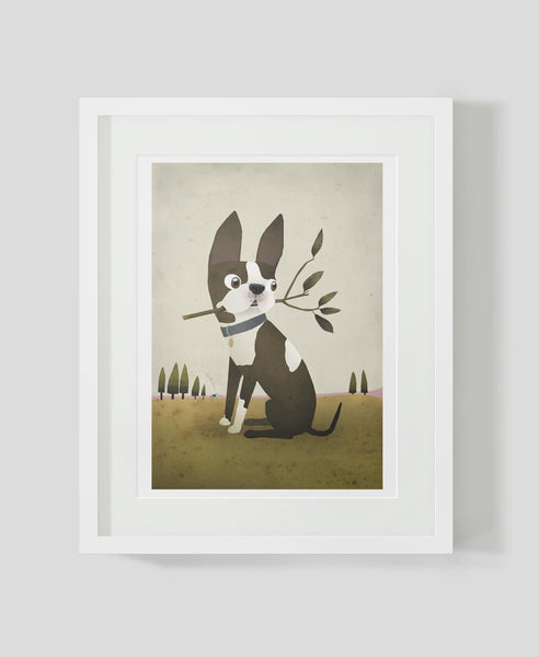 Framed art print Boston Terrier by Patrick Latimer