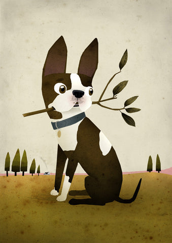 Art print Boston Terrier by Patrick Latimer