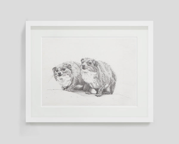 Dassies by Sarah Wocknitz framed