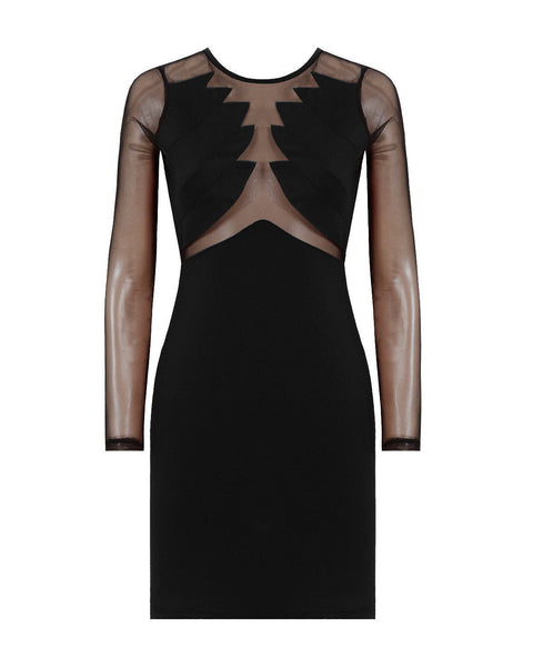 Net Panel Black Bodycon Dress-Jezzelle