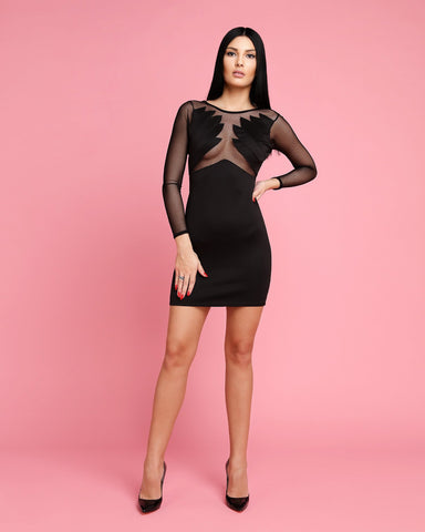 Net Panel Black Bodycon Dress - Jezzelle
