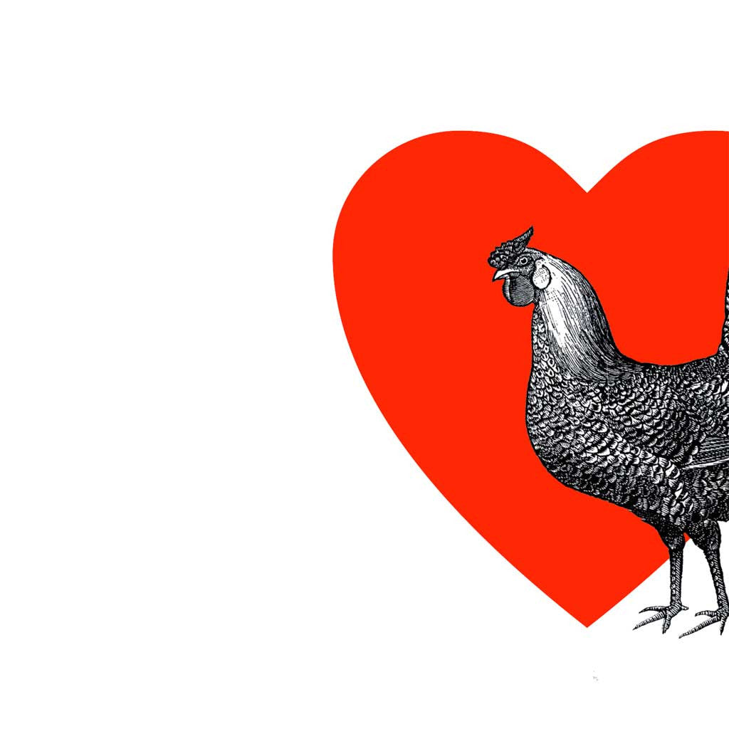 Greeting card featuring a large black and white chicken against a big red heart