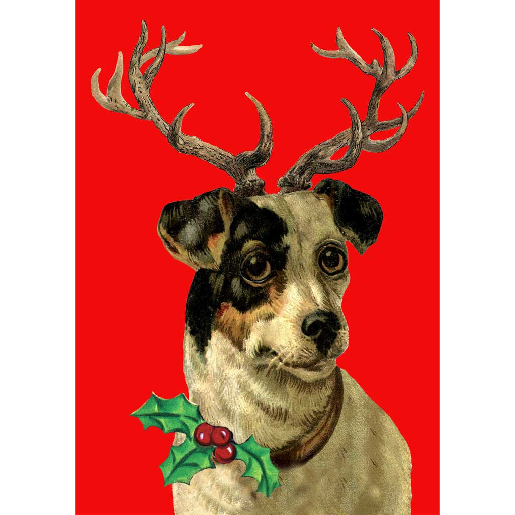 Jack Russell with antlers Christmas cards (x5)