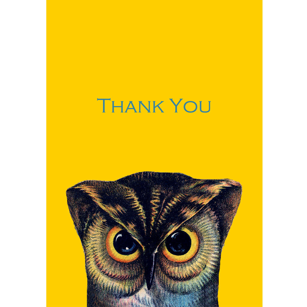 Pheasant Plucker & Son's thank you notelets featuring a wise old owl on a retro mustard yellow background