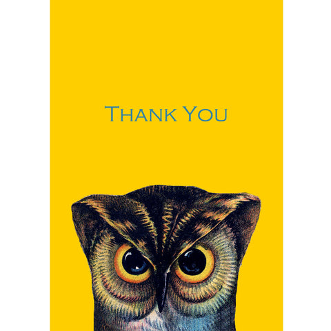 Wise old owl thank you postcards (pack of 5)