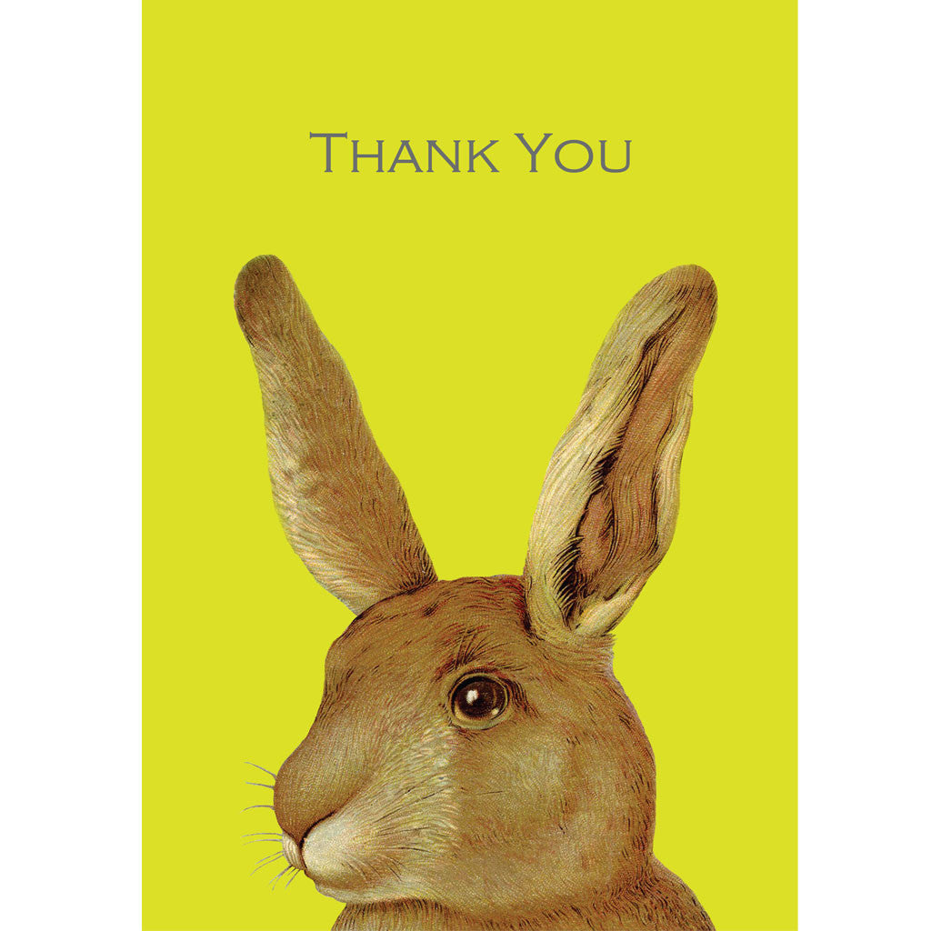 Rabbit thank you cards (pack of 5)