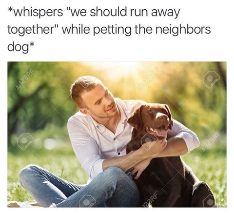 Whispers to dog meme