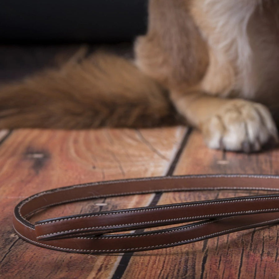 Flat leather leash