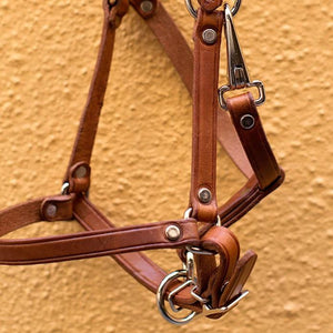 Foal Leather halter in naturelle colour