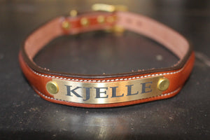 Raised Collar with space for a name plate