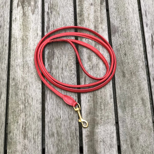 Padded Rolled Dog Leash Red