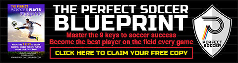Play perfect soccer