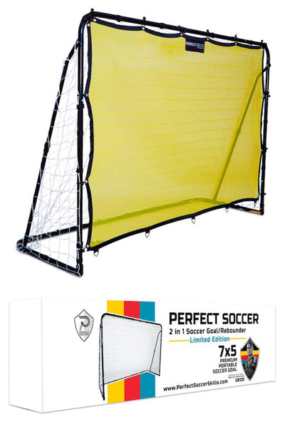 . Portable Soccer Goal & Rebounder 2-in-1 (Retail Price $199)