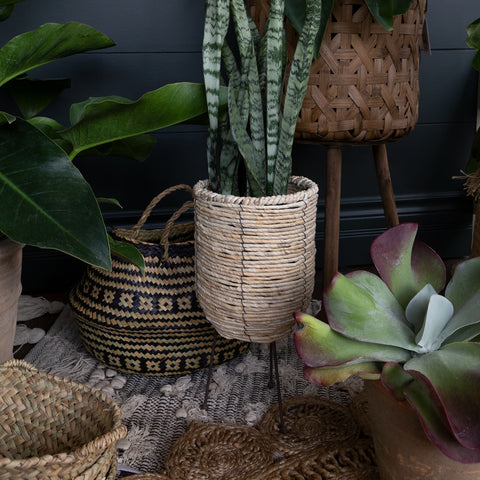 Adora Tripod Plant Basket at Tonic Living